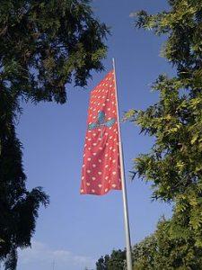 Kompetenzflagge hissen