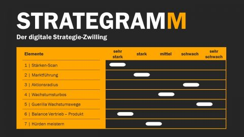 Das STRATEGRAMM®