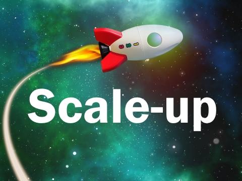 Das Scale-up kommt